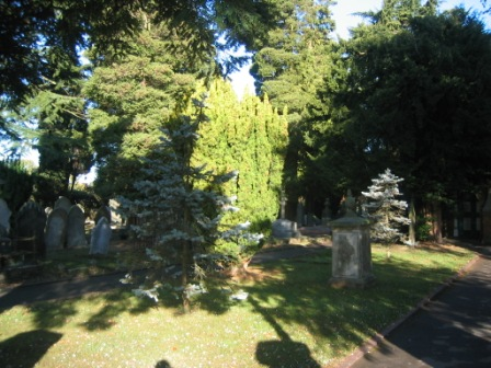 The Kingswood Chapel Graveyard